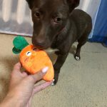 Happy Dog Stuffed Toy With Squeaker photo review