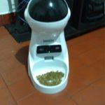 Happy Dog Auto Feeder Dispensers photo review